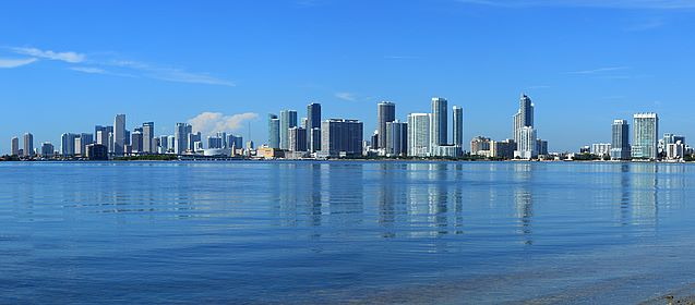 Marion Kaarina Ott - Dynamic Realty Group, Inc. / Miami Beach